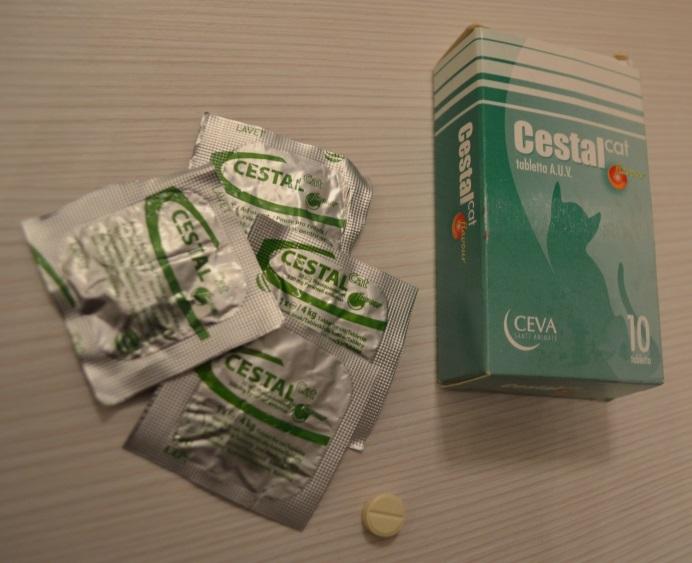 féreg elleni gyógyszerek megelőzés céljából