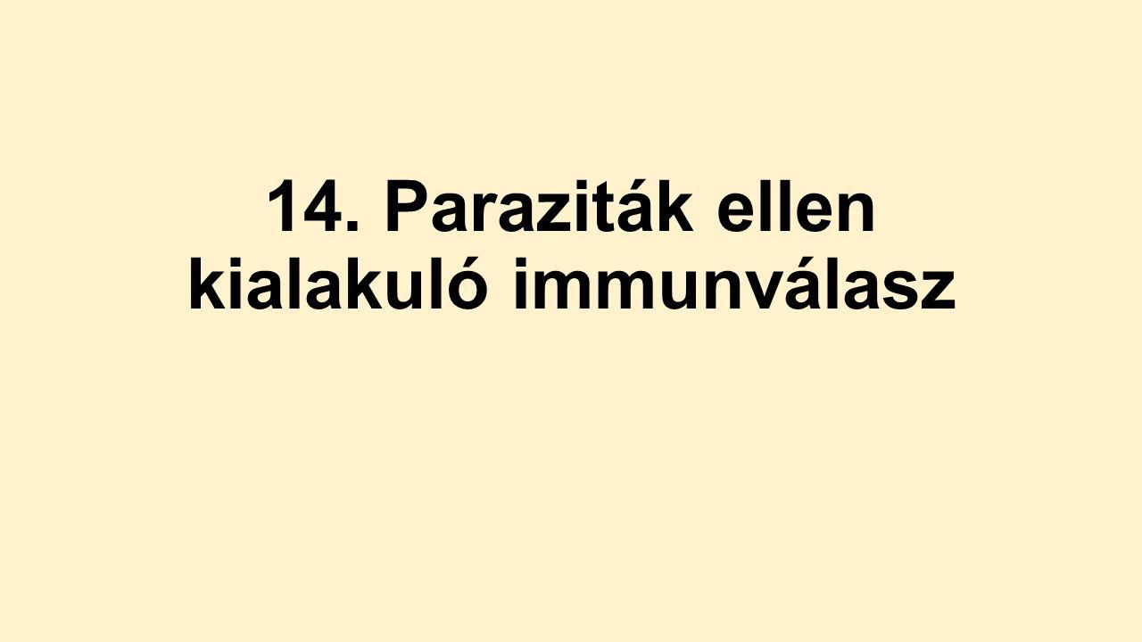 vörösvérsejt- paraziták emberben)