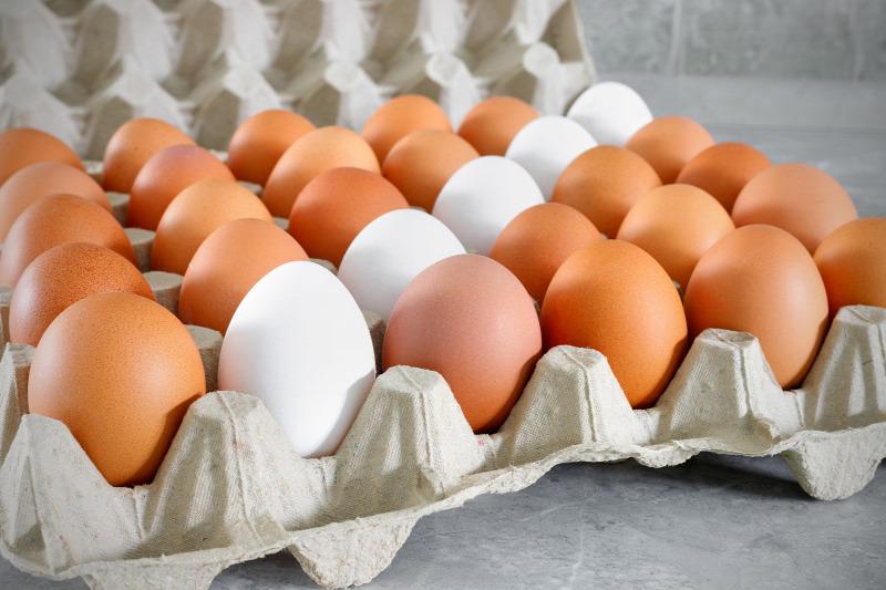 Ha talál tojást féregkezelésben. Nyír rügyek ciszták lamblia ,terhesség alatt paraziták kezelésére
