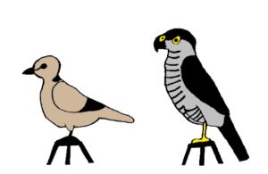 madár hemoparasites)