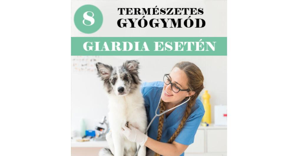 férgek giardia kezelése)