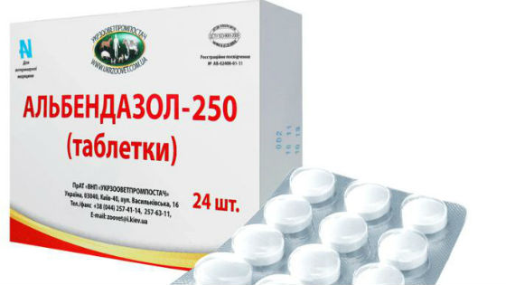 enterobiosis tabletták egy gyermek számára
