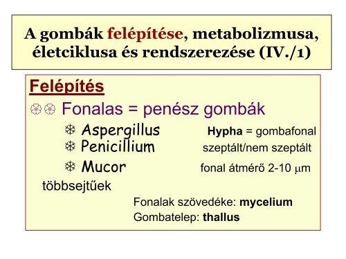 extraintestinalis helminthiasis kezelése