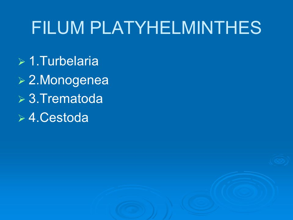 filum platyhelminthes ppt