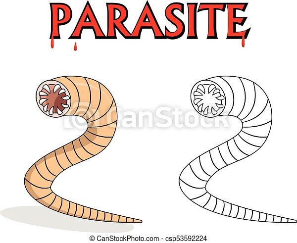 piros helminták parazitaellenes gyógyszerek a demodexhez