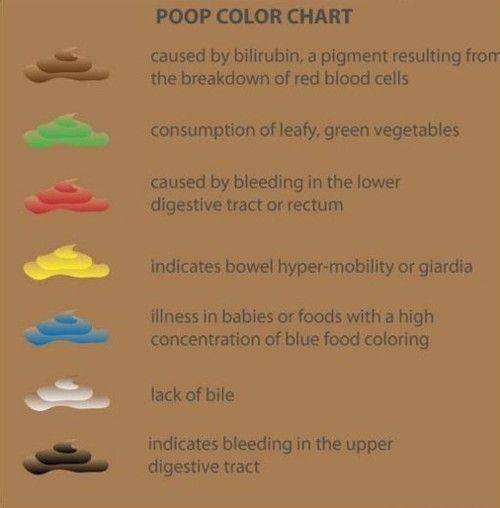giardia diarrhea color)