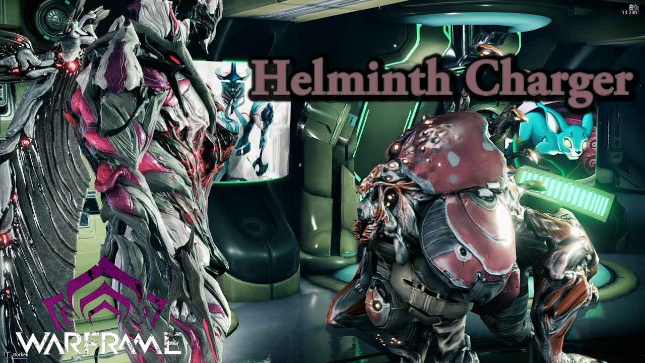 helminth cyst)