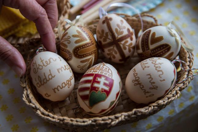 helminth tojások röviden