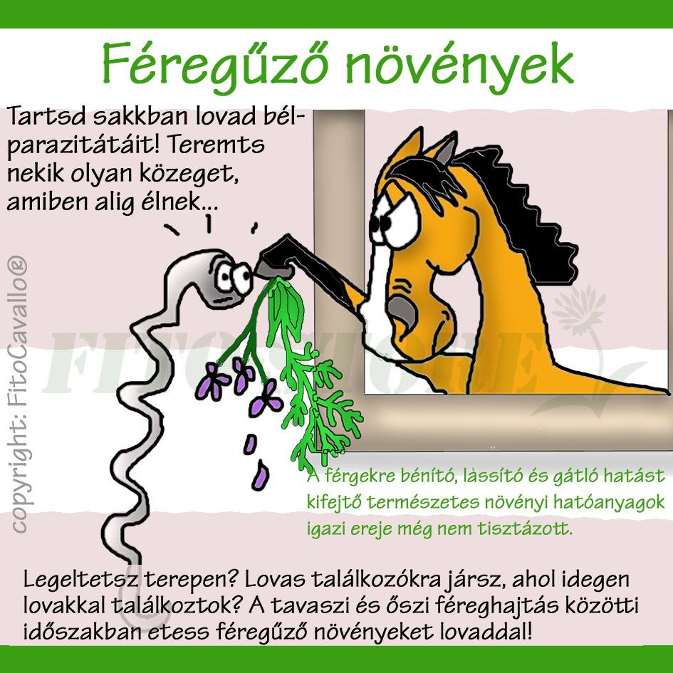 hogyan lehet gyógyítani a férgeket)